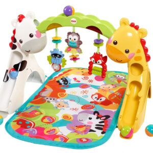Fisher Price Newborn to Toddler Play Gym - Multi Color-0