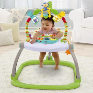 Fisher Price Rainforest Friends Spacesaver Jumperoo Baby Bouncer - Multicolor-0
