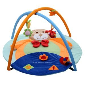 Mee Mee Teddy Deluxe Musical Activity Gym - Blue-0