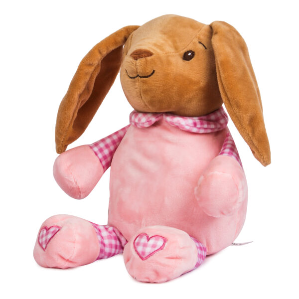 Soft Toy with blanket giftset-26763