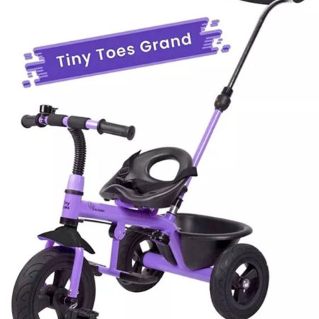 R for Rabbit Tiny Toes Grand The Smart Plug N Play Tricycle - Purple-0